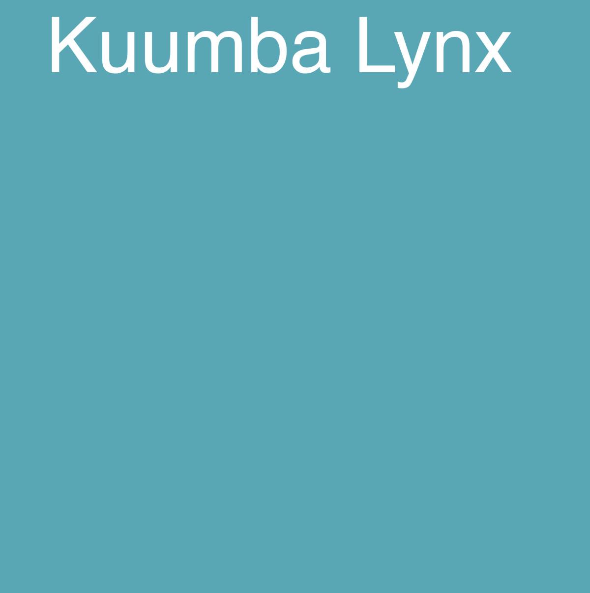 Kuumba Lynx